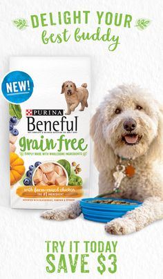 It all starts with farm-raised chicken -- the #1 ingredient in New Beneful Grain Free. Simply made with real, wholesome ingredients like accents of blueberries, pumpkin, and spinach for a great taste your adult dog will love. Try it today and save $3.