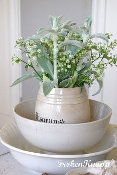fresh cut lambs ear & white flowers | Fröken Knopp