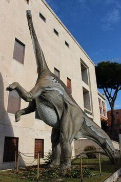 Dinosauri in carne e ossa - Dipartimento di Scienza della Terra e Biologia Ambientale