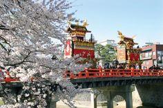 春天的山王祭是日枝神社的定期祭祀,以安川大街的南側•上町為舞臺展開。祭日儀式從3月1日開始,首先決定彩車的順序,4月14日、15日是正式祭典,兩天均可觀賞到華麗的傳統技藝。 http://tasteoflifemag.com/travel/experience-gifu