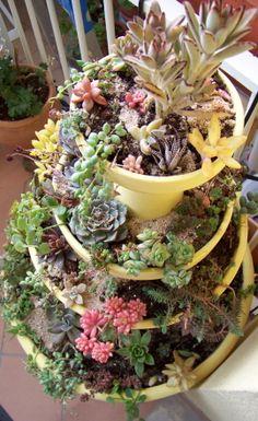 Cómo hacer mini jardines reutilizando macetas rotas   La Bioguía