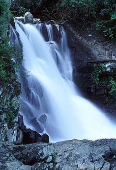 Abrams Falls is a waterfall 5 mile roundtrip hike on the Abrams Falls Trail. The trailhead is midway around the Cades Cove Loop Road, just before the Cable Mill area and visitor center.