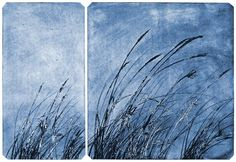 """""""On a clear day"""" etching by © Syd Tunn"""