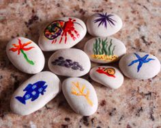 A House for a Hermit Crab Story Stones