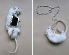 Rat coin purse? by Reid Peppard
