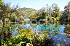 Te Waikoropupu Springs, Takaka, New Zealand royalty-free stock photo