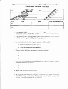 50 Dna And Rna Worksheet Answers In 2020 Persuasive Writing