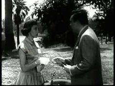 The Bigamist (1953, dir. Ida Lupino) - Entire film