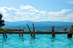 Resort Ranch vacation at Averill's Flathead Lake Lodge, Montana, USA. One of Ranches ultimate Resort Ranch vacations Dude Ranch Vacations, Best Family Vacations, Flathead Lake, Guest Ranch, Road Trip Hacks, Montana, Places To Go, National Parks, Travel
