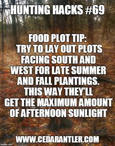 For late season plantings in your food plots, laying out your plots facing south and west will help your seed take full advantage of the sunlight needed for growing.