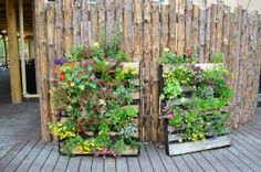 pallet garden camouflage for compost bins?