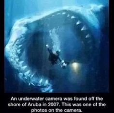 I don't really believe this one, but it would still be terrifying!