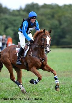 Phillip Dutton continued to solidify his partnership with Mr. Medicott and they finished in 5th place at the CIC***