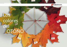 Con el#otoño llegan las nuevas #tendencias que nos van a acompañar esta temporada. Hoy queremos poner nuestra mirada en los nuevos colores de moda que van a ser utilizados en los proyectos de interiorismo y decoración más actuales.