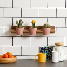 Display your favorite houseplants with a more personalized touch. These five plant display ideas are simple to make and put plastic nursery pots to shame. Foliage Plants, Air Plants, Porch Plants, Shade Plants, Cactus, Iron Plant, Best Indoor Plants, Outdoor Plants, Terrarium Plants