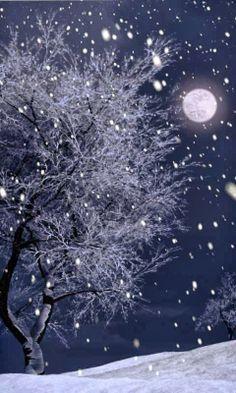 Snowy Moon