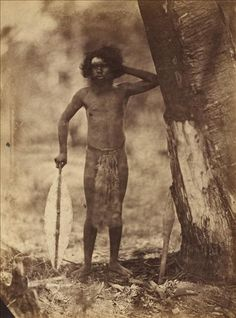 Culture Victoria - Aboriginal man, standing next to a tree,whole-length, full face, holding broad shield