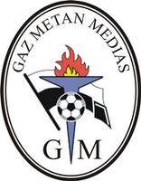 1945, CS Gaz Metan Mediaș, Mediaș Romania #CSGazMetanMediaș #MediasRomania (L6706) Soccer Logo, Football Team Logos, Football Soccer, Soccer Teams, Sports Logos, Team Mascots, Crest Logo, Soccer World, Fifa World Cup