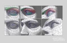 Resultado de imagen para head topography check zone