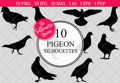 Pigeon Silhouette Vector Graphics includes PNG files with transparent backgrounds at The PNGs are approximately 10 inches at it's widest point. Feather With Birds Tattoo, Black Bird Tattoo, Silhouette Clip Art, Black Silhouette, Silhouette Studio, Animal Cutouts, Bird Drawings, Art Clipart, Black And White Illustration