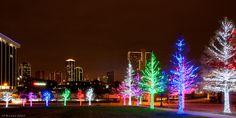 skyline lights christmas - Google Search