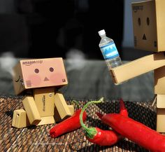 Danbo - I told you not to eat those Chili peppers...
