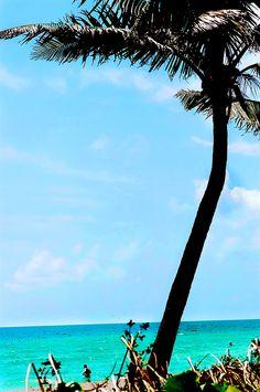 dania beach florida shot with Kodak Ektar 100 film.