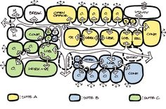 Pin by tanvi kanakia on bubble diagrams | Pinterest | Google images ...