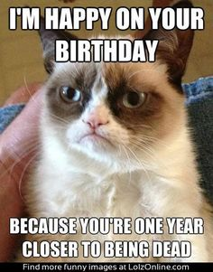 A birthday message from your friend Grumpy Cat...