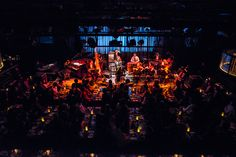 Naruyoshi Kikuchi y Pepe Tormento Azucarar|LIVE REPORTS|BLUE NOTE TOKYO Cabaret Musical, Club Style, Archetypes, Old Friends, Jazz, Musicals, Tokyo, 21st, Note