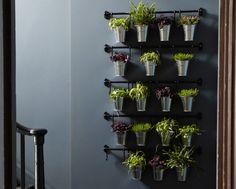 Blick auf eine Reihe von FINTORP Stangen in Schwarz, daran hängend Töpfe mit Zimmerpflanzen und Kräutern.