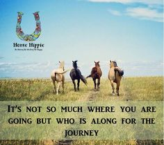 So true....I'd go anywhere with my Horse Hippies www.horsehippie.com #itsalifestyle