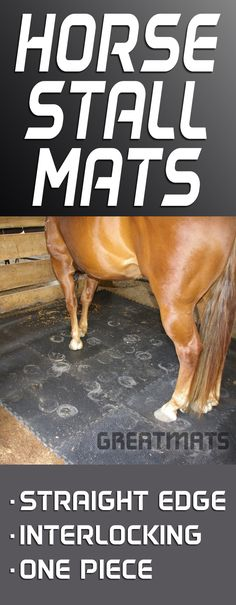 Horse Stall mats come in many forms. Check out Greatmats extensive collection!