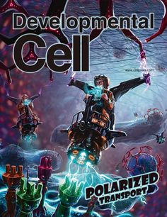 AWESOME cover of Developmental Cell April 2012