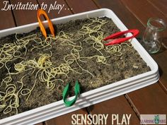 Invitation to play spaghetti worms in dirt - Kids will have so much fun catching all the slippery and slimy spaghetti worms with tweezers and putting them into a jar. Sensory Tubs, Baby Sensory, Sensory Activities, Craft Activities For Kids, Sensory Play, Toddler Activities, Outdoor Activities, Worms In Dirt, Curriculum
