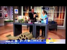 Lazy Cat products featured on Canada AM - June 2013 Cat Products, Lazy Cat, Pet Furniture, Tv, Youtube, Home Decor, Interior Design, Home Interior Design, Youtubers