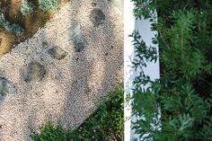 Estudi d'Arquitectura Cobo del Arco. Costa Brava. Begur. Bonita casa mirador. Vista del camino de entrada