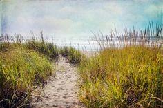 the smell of salt air Art Print #beach #ocean #coastal #washington #landscape