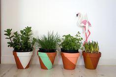 Idée customisation de pots de fleurs