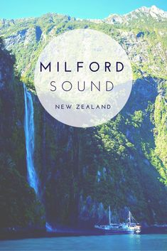 """We break down the question """"is Milford Sound worth it?"""" examining the time, drive, cost, and going with a group tour to this top rated New Zealand destination!"""
