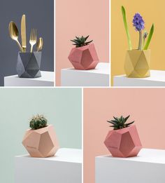 Austrian designer Klara Schuster, has created a collection of colorful concrete planters and vases that add a modern geometric look to your home decor.
