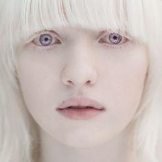 Альбиносы.   Colors.life