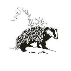 Bashful Badger. #badgers #animals #animalart #art #design #wildlife #wildlifeart #honeybadger #sammyjackles #graphicdesign #newart #bashful #pen #blackandwhiteart