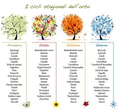 What is there to like when learning a foreign language? Imagine that you are learning the Italian language right at your own living room. Considering the numerous simple methods of learning Italian today, would you rather sit in your Green Life, Go Green, Learn To Speak Italian, Italian Vocabulary, Italian Lessons, Italian Phrases, Italian Quotes, In Season Produce, Italian Language