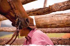 Le secret des chuchoteurs du Montana... #usa #chevaux