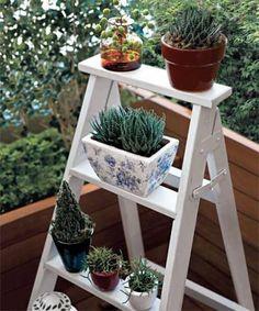 Ressignifique móveis. Aqui, a escada de madeira antiga virou apoio para minijardim.