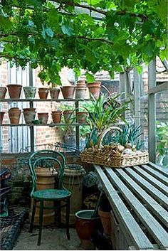 Potting shed with vine. Incorporates the multiple heights for shelves and the potter-friendly growing shelves that lets dirt slip through. Natural wood or white wash? Greenhouse Shed, Greenhouse Gardening, Outdoor Rooms, Outdoor Gardens, Dream Garden, Home And Garden, Potting Sheds, Potting Benches, Conservatory Garden