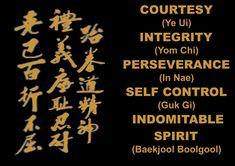 Martial Arts Training, Self Control, Taekwondo, Karate, Troy Michigan, Success, Teaching, Age, Kids
