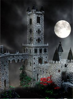 Yes, that's a steampunk vampire castle made from LEGO