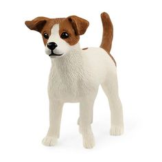 Jack Russell-terrier Jack Russell Terriers, Clever Dog, Jack Russells, White Terrier, Coat Patterns, Terrier Dogs, Mans Best Friend, Dog Breeds, Corgi